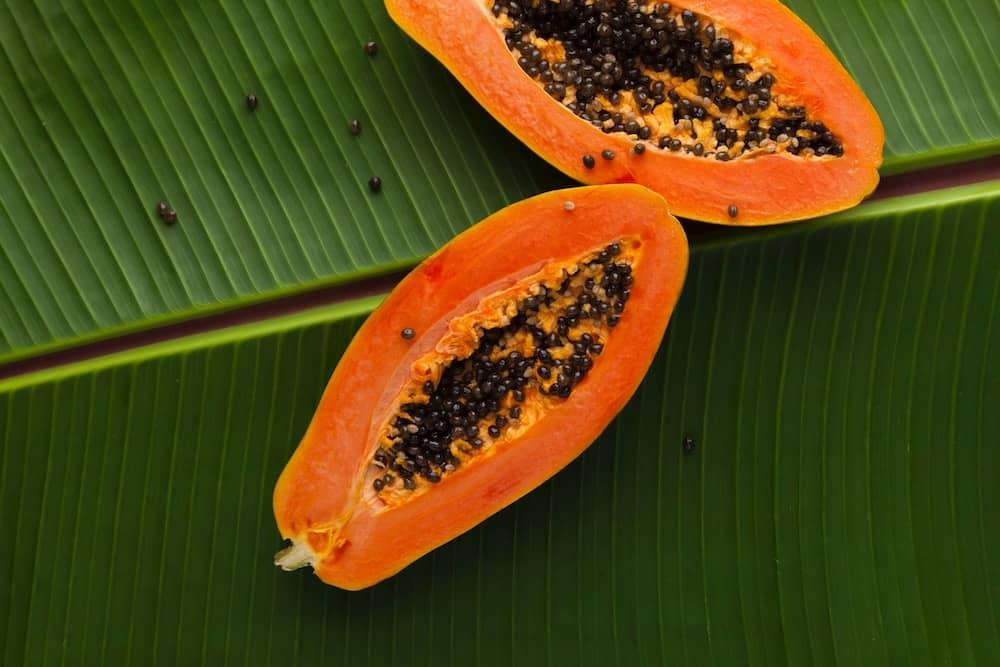 Sweet Ripe Papaya Ready to be Eaten