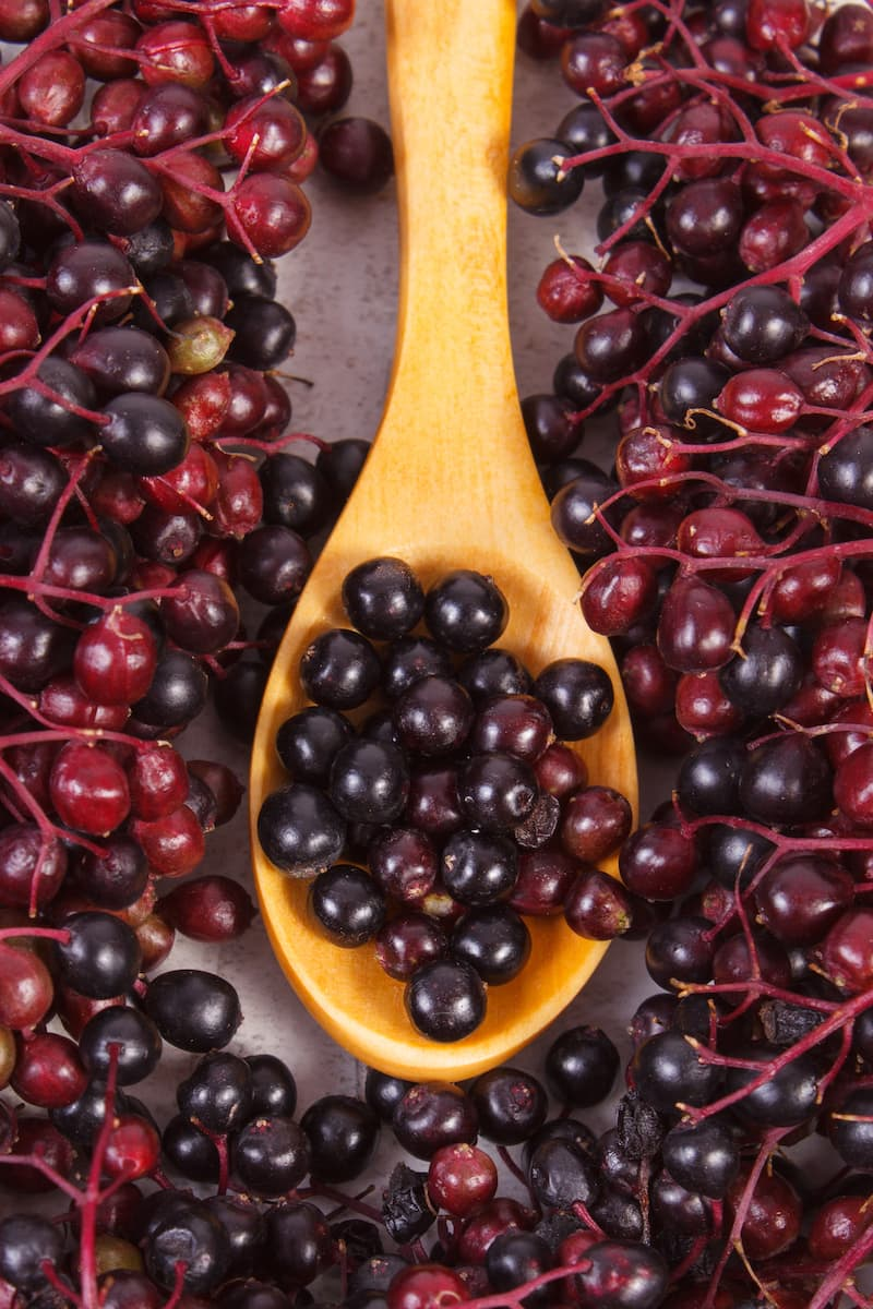 elderberry with wooden spoon